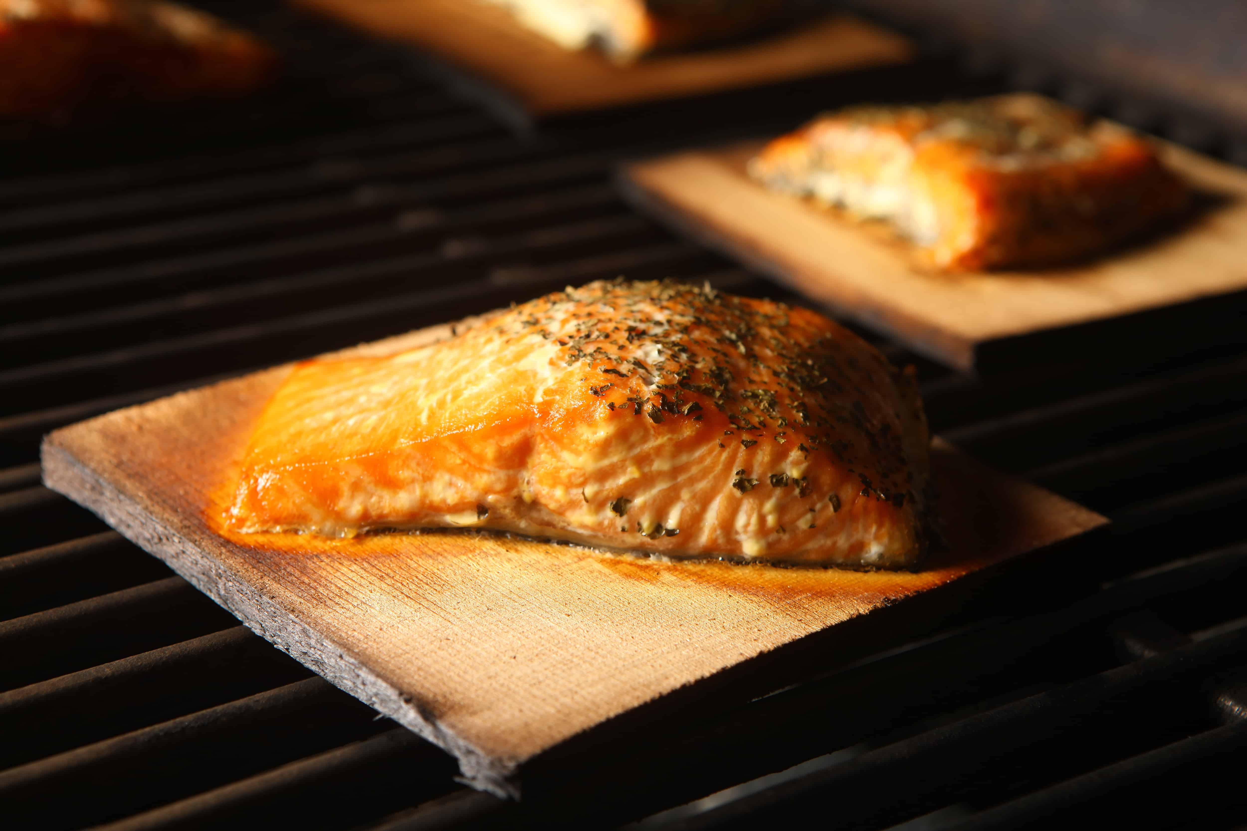 How to choose the perfect grilling plank gourmet grillmaster for Grilling fish on cedar plank